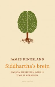 siddharthas-brein